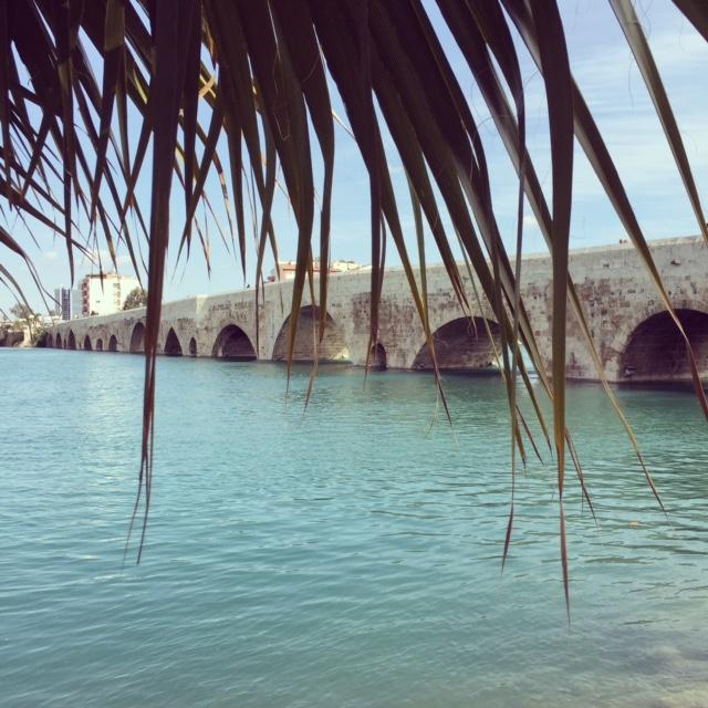 Taş Köprü Adana
